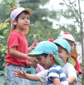 写真 仁慈保幼園で遊ぶ子どもたちと、それを見守る保育士