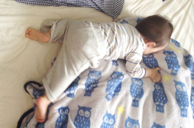 写真 うつぶせで寝る乳児
