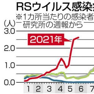 グラフ RSウイルス感染症の発生状況 ※1カ所あたりの感染者数。国立感染研究所の週報から